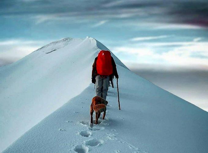 Trek Organizer in in Uttarakhand